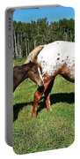 Appaloosa Mamma And Baby Portable Battery Charger