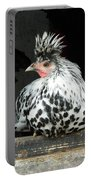 Appenzeller Just Hanging Out Portable Battery Charger