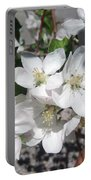 Apple Blossoms 2 Portable Battery Charger