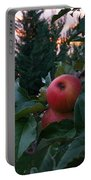 Apple Sunset Portable Battery Charger