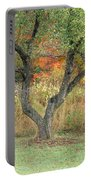 Apple Tree In Autumn Portable Battery Charger