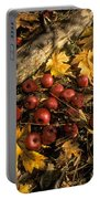 Apples In Fall Portable Battery Charger
