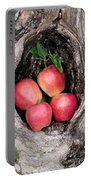 Apples In Tree Portable Battery Charger