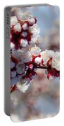 Apricot Blossoms Popping Portable Battery Charger