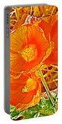 Apricot Globemallow In Vermilion Cliffs National Monument-arizona Portable Battery Charger