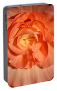 Apricot Pink Tuberous Begonia Portable Battery Charger
