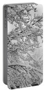 April Snow Bw Portable Battery Charger