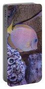 Aquarium Impression Portable Battery Charger