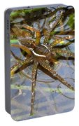 Aquatic Hunting Spider Portable Battery Charger
