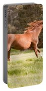 Arabian Horse Running Free Portable Battery Charger