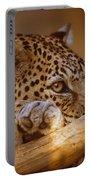Arabian Leopard Panthera Pardus Portable Battery Charger