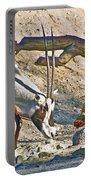 Arabian Oryx In Living Desert In Palm Desert-california Portable Battery Charger