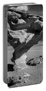 Arbol De Piedra Black And White Framed Portable Battery Charger