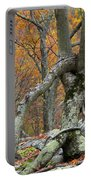 Arboreal Architecture Portable Battery Charger