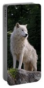 Arctic Wolf On Hill Portable Battery Charger
