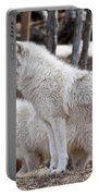 Arctic Wolf Pair Portable Battery Charger