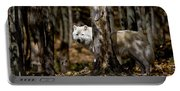 Arctic Wolf Picture 242 Portable Battery Charger
