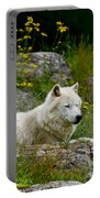 Arctic Wolf Pictures 1128 Portable Battery Charger