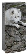 Arctic Wolf Pictures 1142 Portable Battery Charger