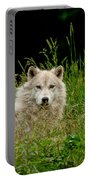 Arctic Wolf Pictures 1172 Portable Battery Charger