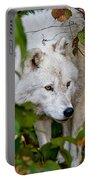 Arctic Wolf Pictures 1228 Portable Battery Charger