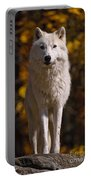 Arctic Wolf Pictures 33 Portable Battery Charger