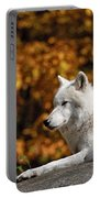 Arctic Wolf Pictures 34 Portable Battery Charger