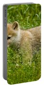 Arctic Wolf Pictures 341 Portable Battery Charger