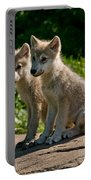 Arctic Wolf Pictures 346 Portable Battery Charger