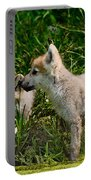 Arctic Wolf Pictures 347 Portable Battery Charger