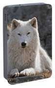 Arctic Wolf Pictures 518 Portable Battery Charger
