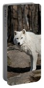 Arctic Wolf Pictures 512 Portable Battery Charger