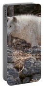 Arctic Wolf Pictures 525 Portable Battery Charger