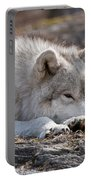 Arctic Wolf Pictures 526 Portable Battery Charger