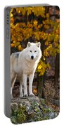 Arctic Wolf Pictures 709 Portable Battery Charger