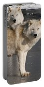 Arctic Wolf Pictures 812 Portable Battery Charger