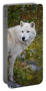 Arctic Wolf Pictures 922 Portable Battery Charger