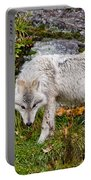 Arctic Wolf Pictures 927 Portable Battery Charger