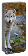 Arctic Wolf Pictures 942 Portable Battery Charger