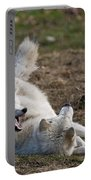 Arctic Wolf Pictures 996 Portable Battery Charger
