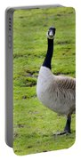 Are You Talking To Me Portable Battery Charger by Barbara Snyder