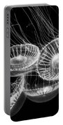 Area 51 - Moon Jellies Aurelia Labiata Portable Battery Charger