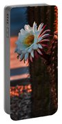 Argentine Cactus Portable Battery Charger