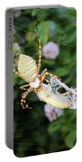 Argiope Spider Top Side Horizontal Portable Battery Charger