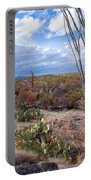 Arizona Afternoon Portable Battery Charger