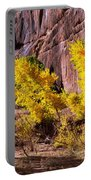 Arizona Autumn Colors Portable Battery Charger