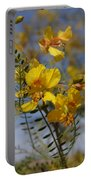 Arizona Gold Portable Battery Charger