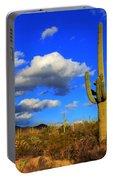 Arizona Landscape 2 Portable Battery Charger