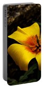 Arizona Poppy Portable Battery Charger