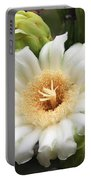Arizona State Flower The Saguaro Blossom Portable Battery Charger